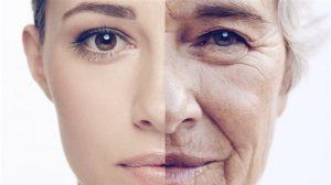 Postponing old age